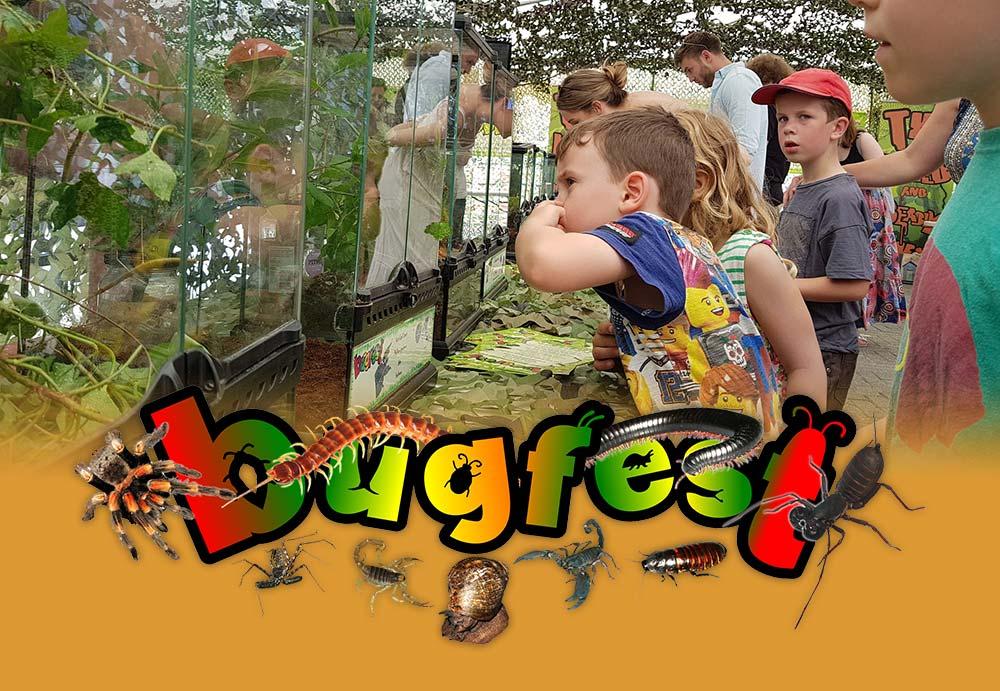 Bugfest at Abbotsbury Children's Farm - May Half Term
