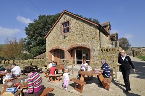 Children's farm cafe