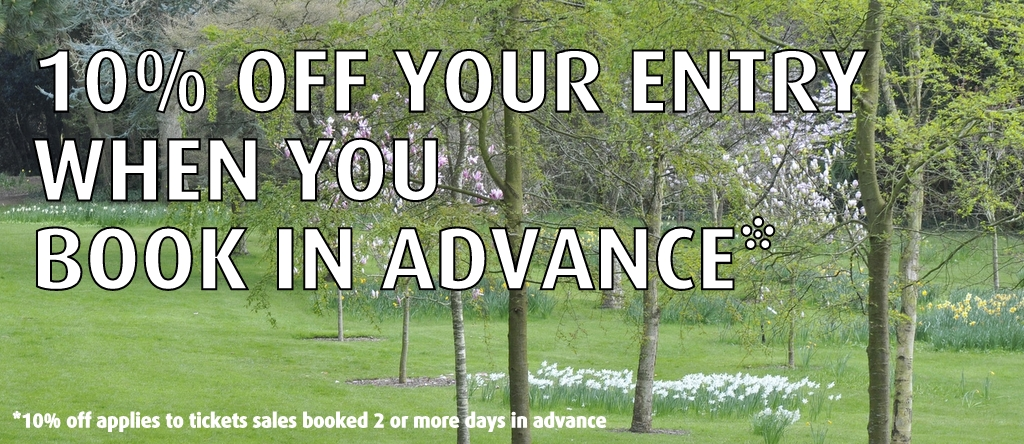 20% off when you book in advance