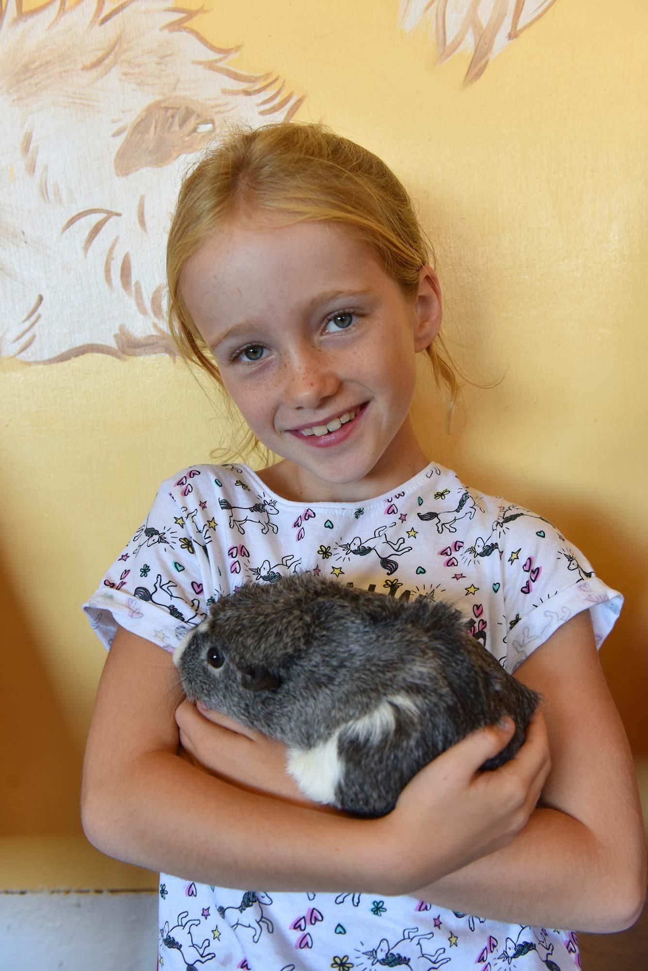 Cuddle a guinea pig at Abbotsbury Children's Farm