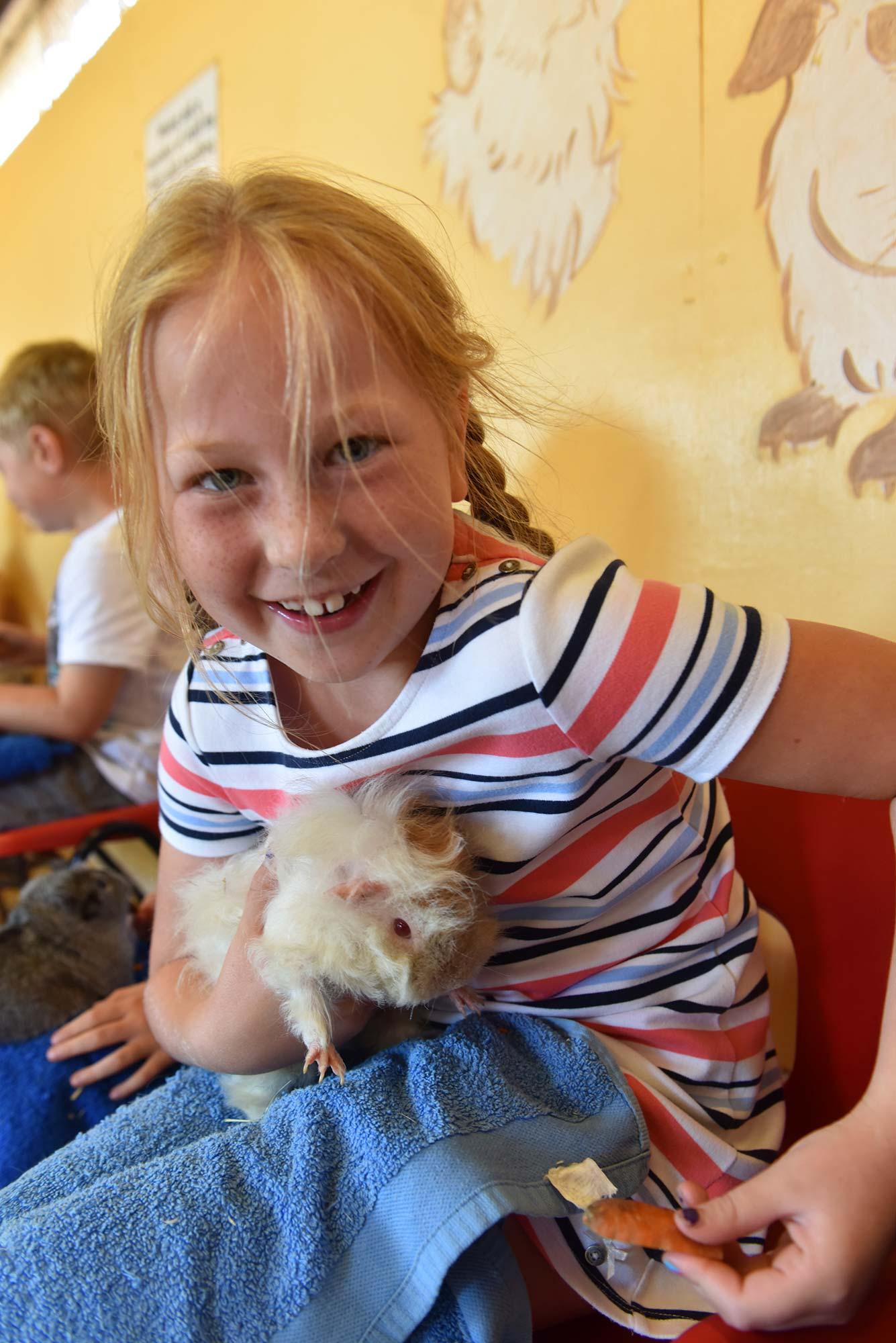Cuddling and feeding the guinea pigs at Abbotsbury Children's Farm