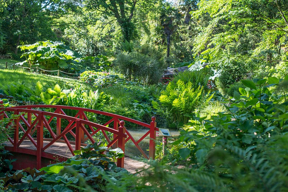 Red Bridge In The Woodland Valley
