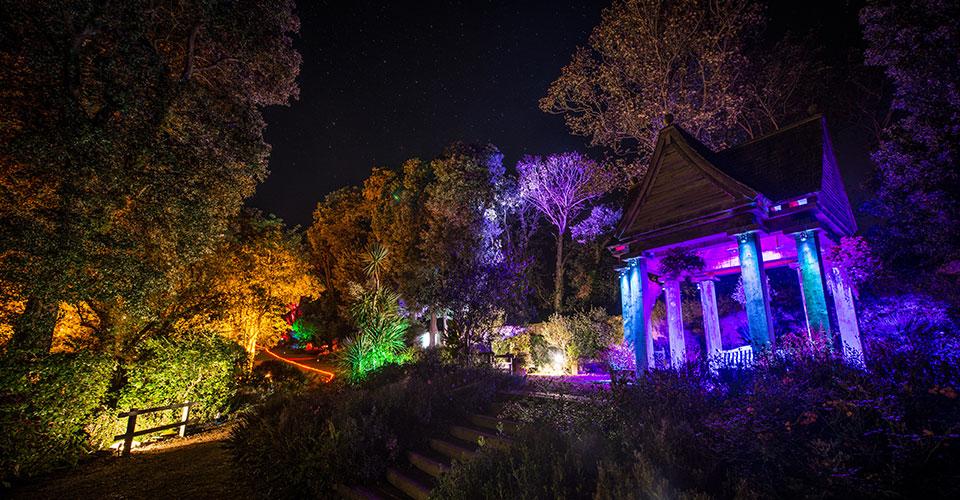 Enchanted Illuminations