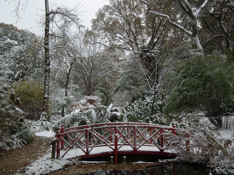 Dec-2010-023
