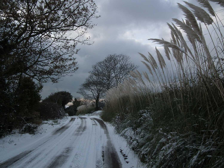 Dec-2010-067