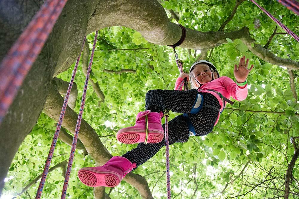 Big Tree Climbing Company at Abbotsbury Gardens