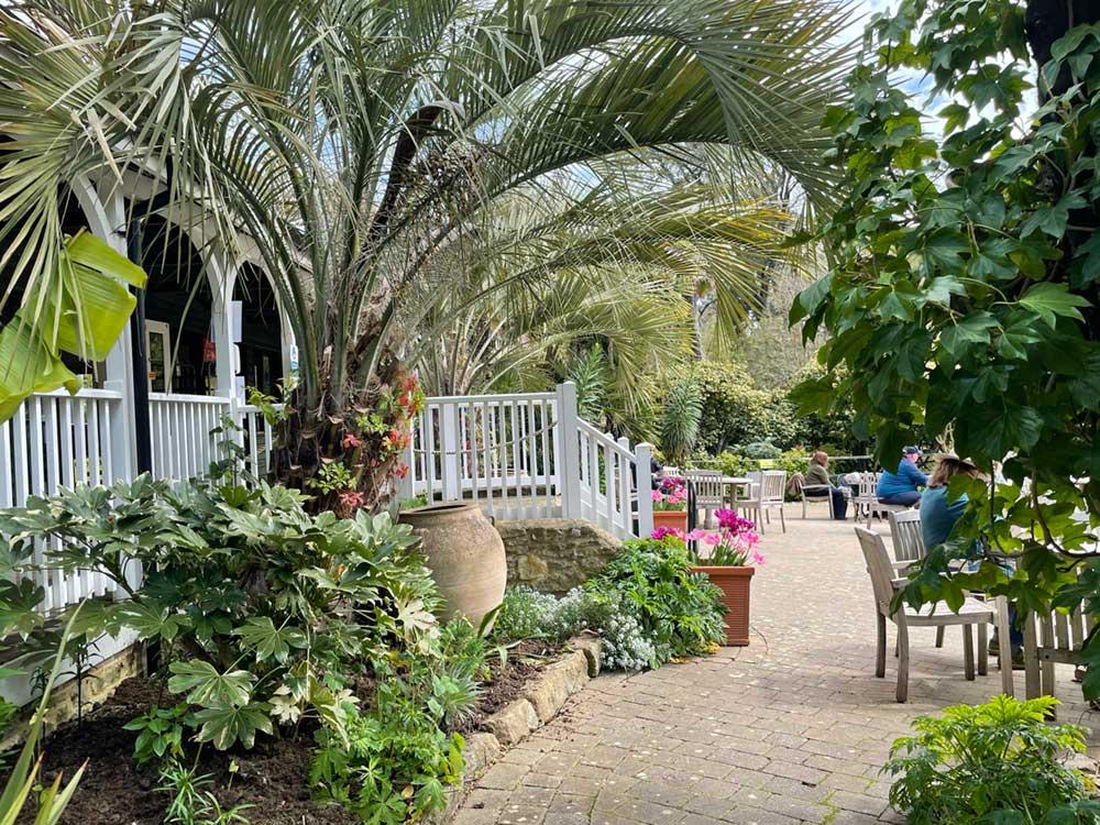 The Coffee Shop at Abbotsbury Subtropical Gardens