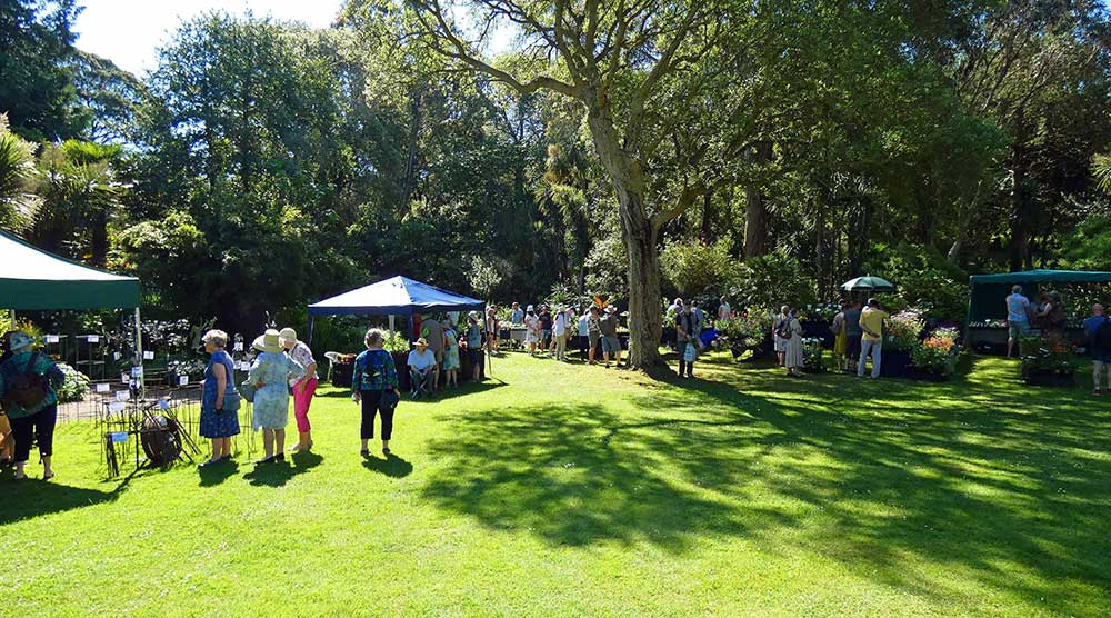 Abbotsbury Subtropical Gardens autumn plant fair in association with Plant Heritage