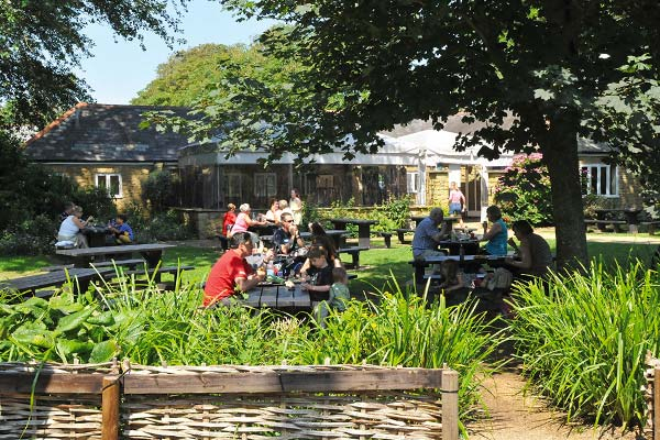 Abbotsbury Swannery Cafe