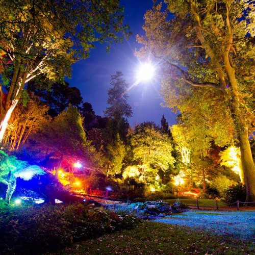The gardens are magical during the Enchanted Floodlit Gardens