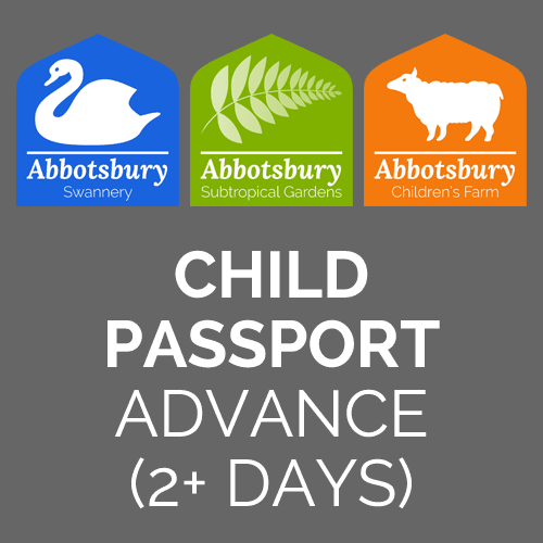 Passport-Child-Advance-2
