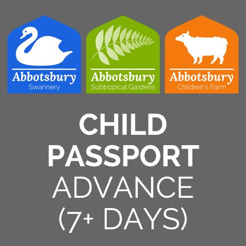 Passport-Child-Advance-7