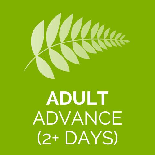 SG-Adult-advance-2+