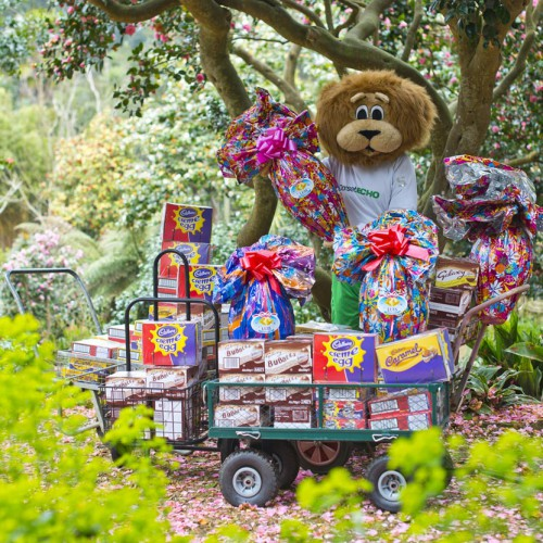 The Giant Easter Egg Hunt is the biggest in Dorset