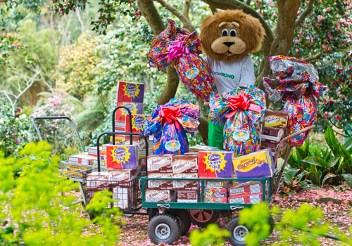 The Giant Easter Egg Hunt at Abbotsbury Subtropical Gardens