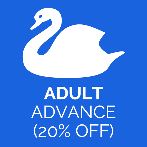 Adult advance ticket for Abbotsbury Swannery