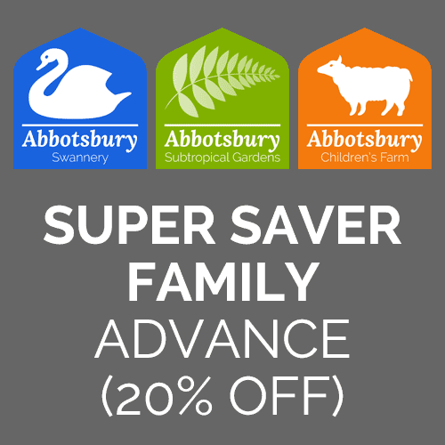 Super Saver Family advance ticket