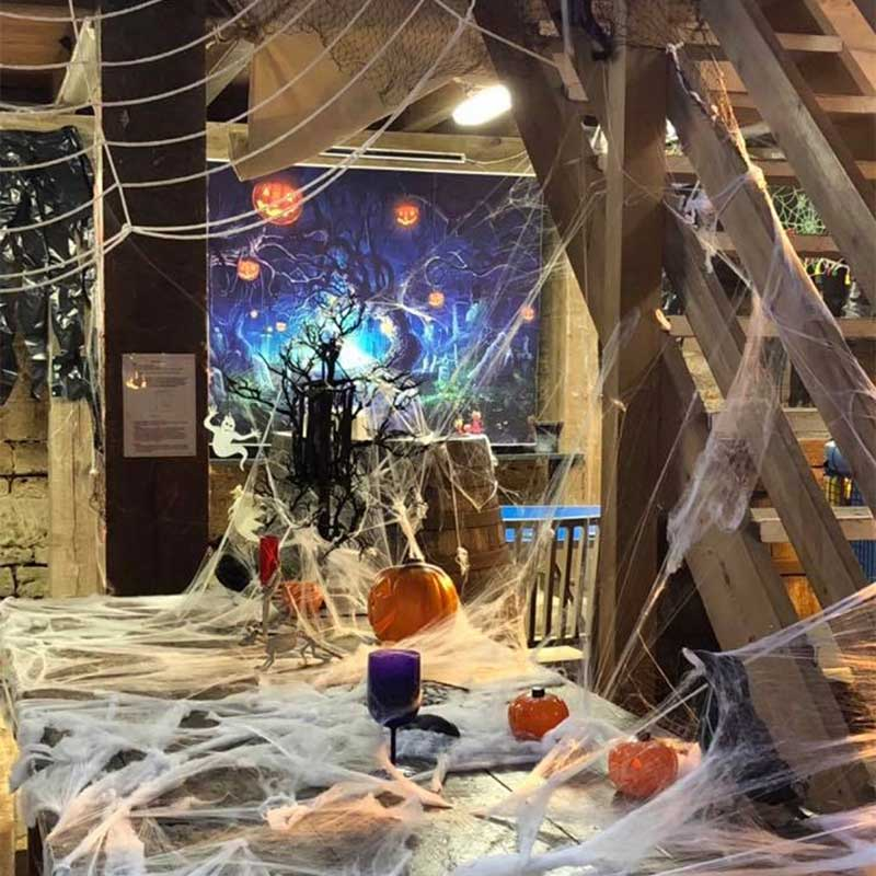 Halloween Fun at Abbotsbury Children's Farm