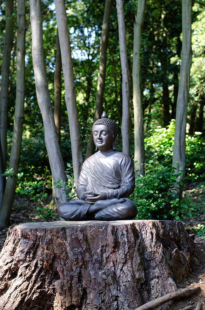 Buddha in the Sculpture Trail