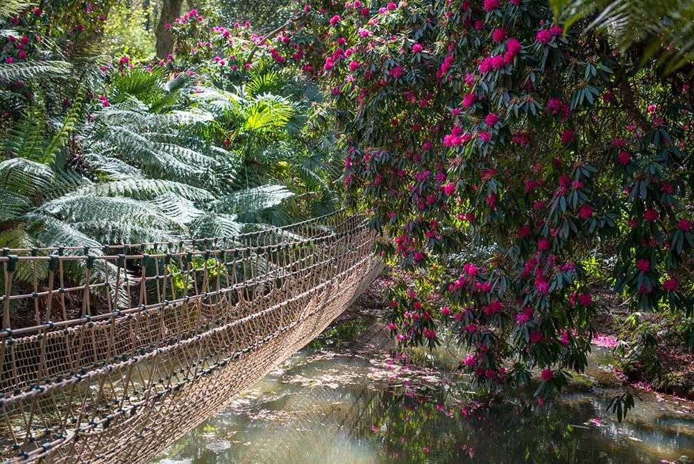 Burma Rope Bridge In April