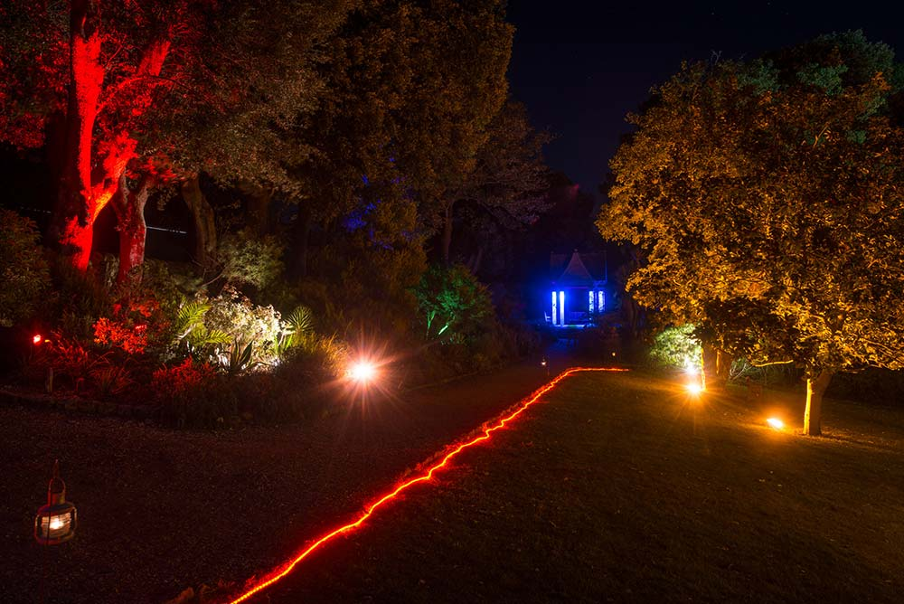 Enchanted Illuminations: Path Leading To The Pavilion