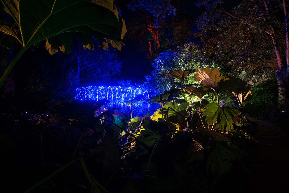 A Red Bridge Turns Blue During The Enchanted Illuminations