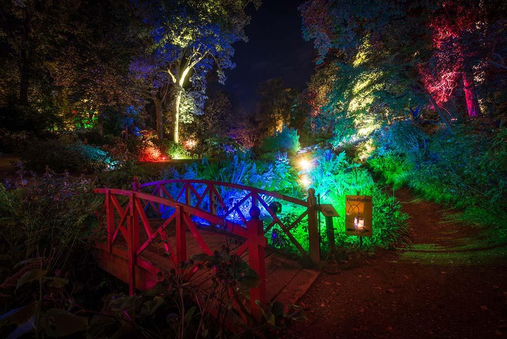 Red Bridge During The Enchanted Illuminations