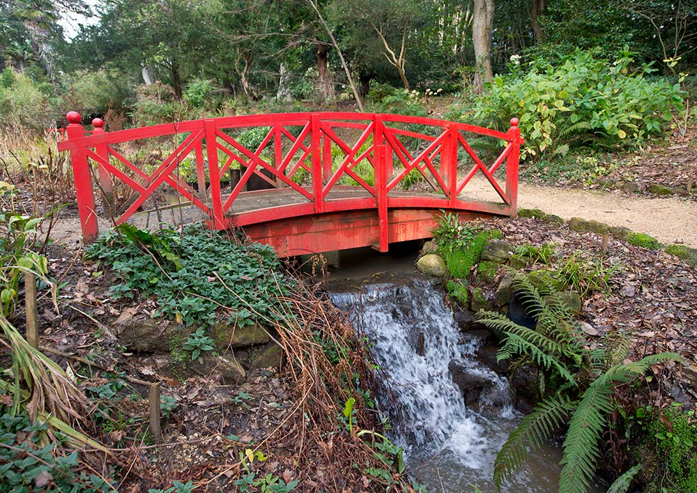 Water running underneath a red bridge in the Woodland Valley