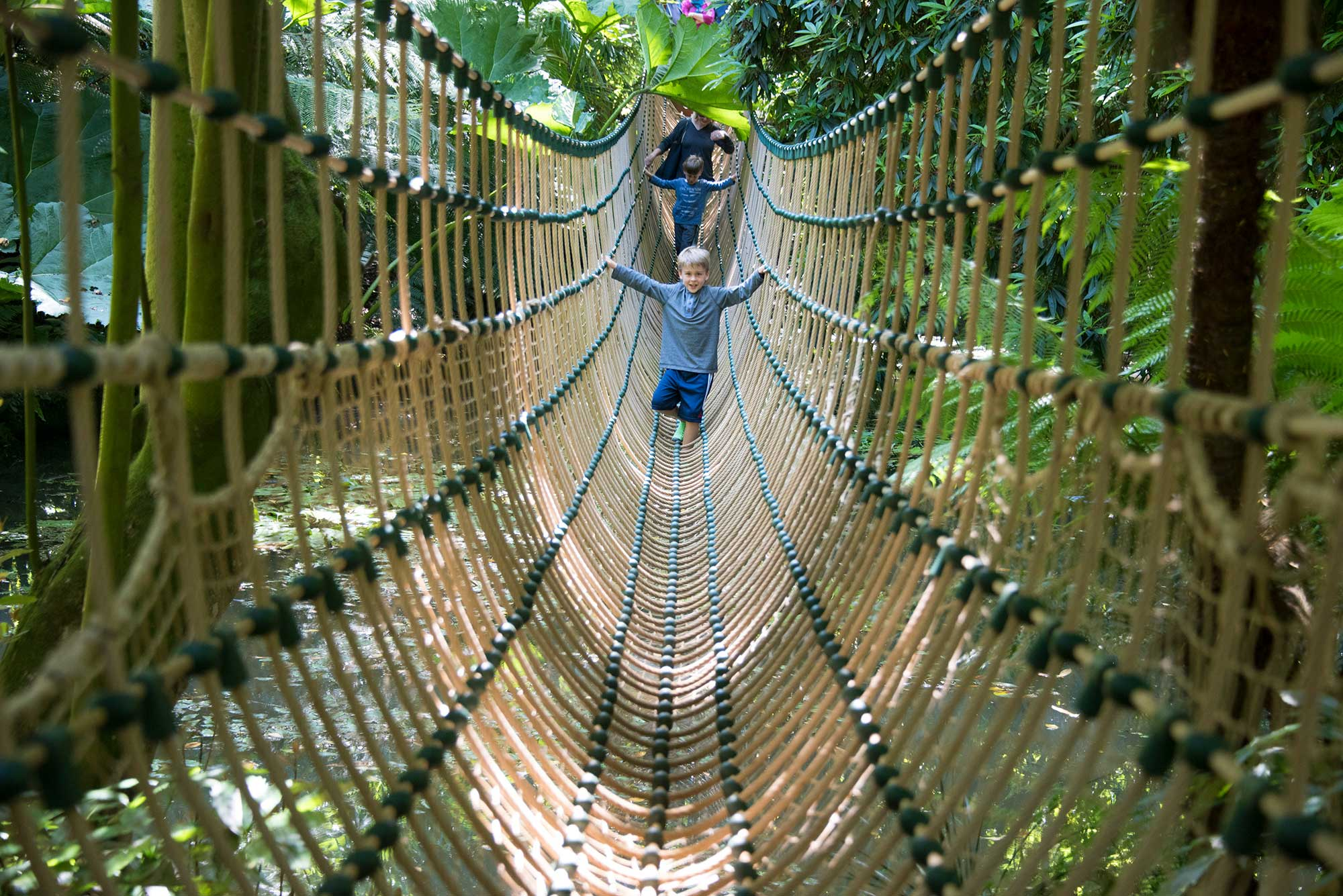 The Burma Rope Bridge at Abbotsbury Subtropical Gardens