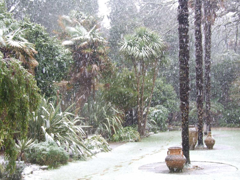 Jan-Feb-2009-064