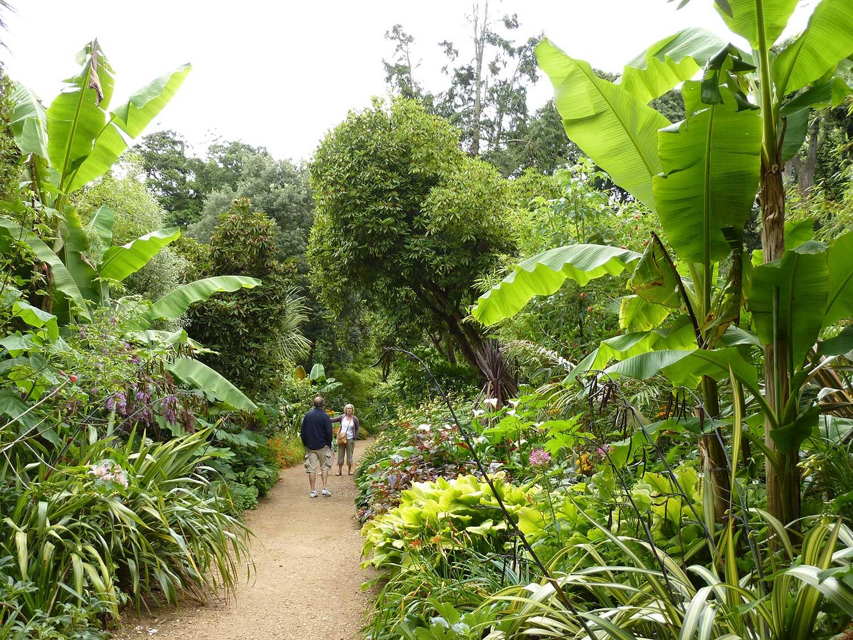July-2009-Jungle-ride