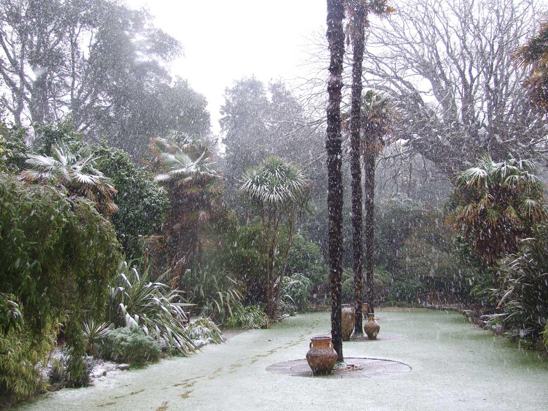 'Sunken-Lawn'-Jan-2009