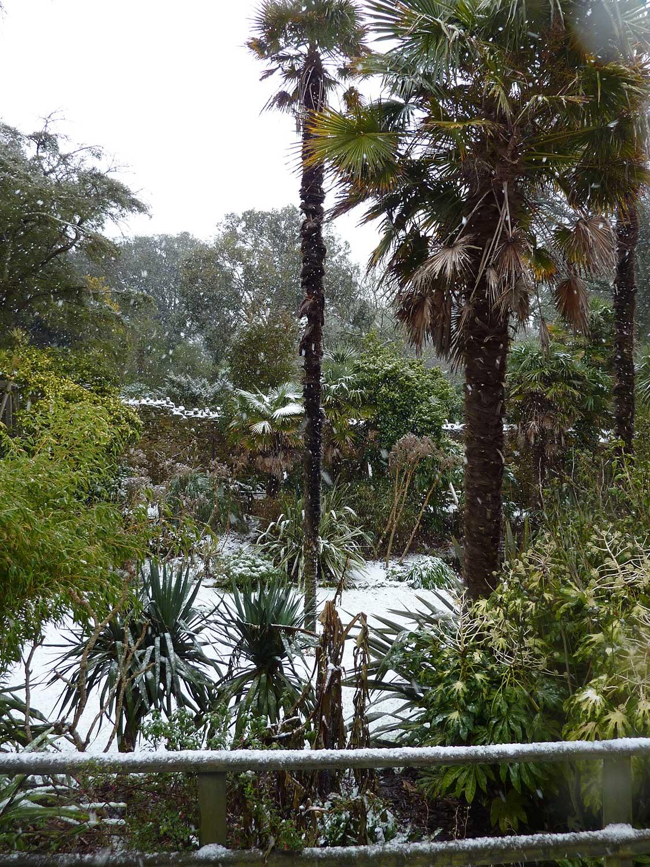 Sunken-Lawn-Jan-2010