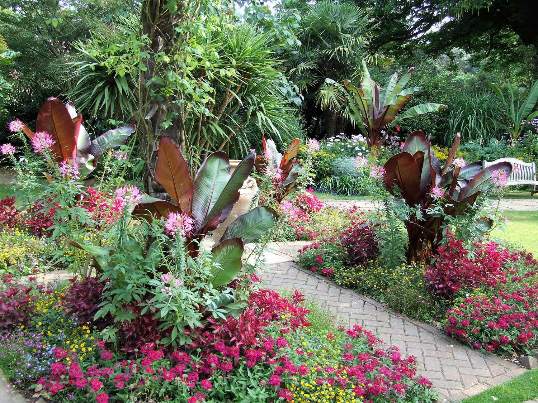 Victorian-garden-bedding-with-Ensete