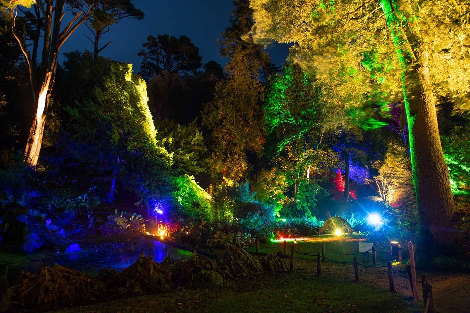 Floodlit Evening Walks at Abbotsbury Subtropical Gardens