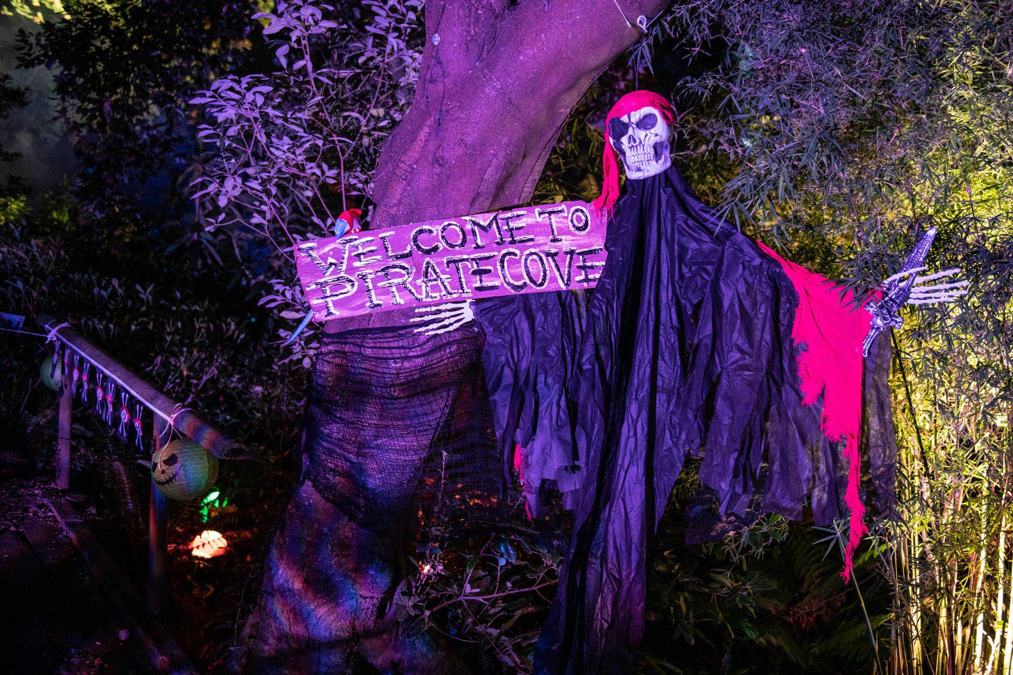 Halloween Family Fun Nights at Abbotsbury Subtropical Gardens