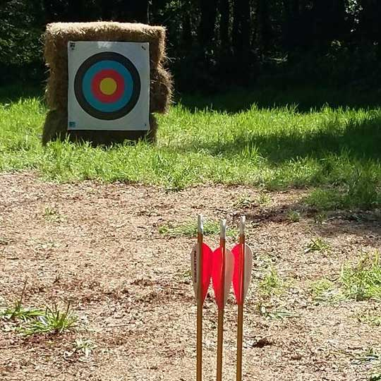 Archery with A2Z Adventures at Abbotsbury Swannery