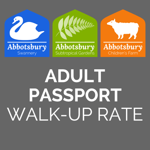 Passport-Adult-Regular