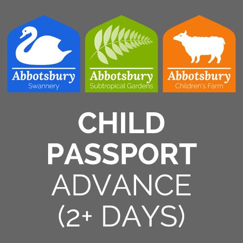 Passport-Child-Advance-2