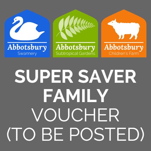 Super Saver Family ticket voucher